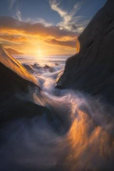 Phoenix - Stunning Nature Photography by Michael Shainblum