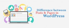 Posts and Pages in WordPress