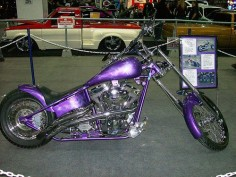 purple harley davidson motorcycle