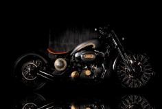 Rajamata Harley 48 by Rajputana Custom Motorcycles