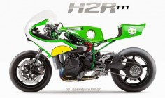 RocketGarage Cafe Racer: H2R Endurance Version