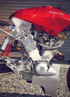 Sachs Beast 1000