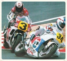 Schwantz vs Rainey