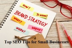 SEO is the hallmark of any digital marketing strategy. As a small business, what do you need to do to up your search engine optimization game?