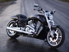Sexy-Harley Davidson V Rod Muscle
