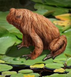 Siberian Long Haired Frog - Worth1000 Contests