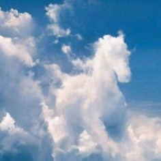 stallion in the sky, wow hmmm, jesus comes back riding a white horse, maybe this is a sign to wake people up???? is that a invisible rider on that horse, you can see an out line image