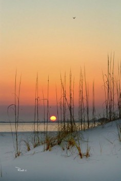 Sunset At Pensacola Pass, Florida (By Richard Roselli)