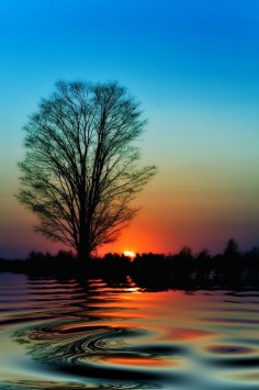 Sunset Reflection