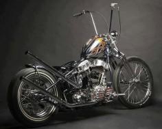 sweet Harley.