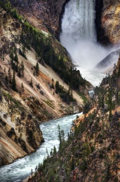 The Falls, Yellowstone National Park