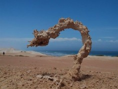 """This is What Happens When Sand Gets Struck by Lightning:  Fulgurites are natural hollow glass tubes formed in quartzose sand, silica, or soil by lightning strikes (at 3,270 °F), which instantaneously melts silica on a conductive surface and fuses grains together over a period of around one second. Photographed by Ken Smith."""