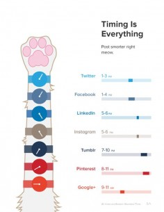 Timing is everything - Here are the best times to post on social networks - Remember time zones for reposts.