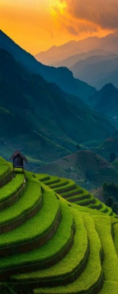 Top 16 Outstanding Places: Sunset of Rice Terrace @ Mu Cang Chai, Vietnam 50% off airfare on #AirConcierge