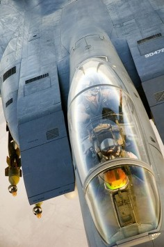 US Air Force McDonnell Douglas F-15, unbelievable!!!