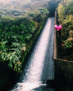 waterslide- Waimea White Road Hiking Area, Hawaii