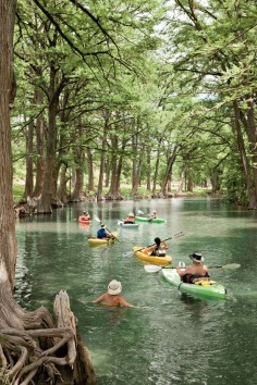 Winding through tunnels of towering bald cypress trees on its way to Bandera, the Medina River doesn't get the crowds that flock to the Guadalupe River. So you have most of it to yourself as you spend a couple of hours of bliss in a kayak rented from the Medina River Company, 830/796-3600.