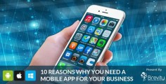 10 Reasons why you need a Mobile App for your Business : Brevity Software Solutions Pvt Ltd is a leading Mobile Application Development Company in India expertise in mobile platforms like Android, iPhone, iPad, Windows, iPod, Tablet Application Development and Customized Mobile Apps Development.