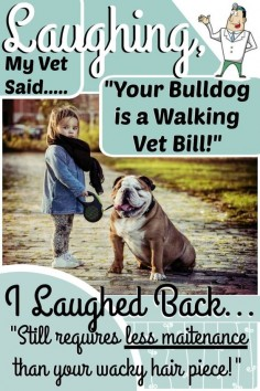 10 Things You Should Never Say to a Bulldog Owner!