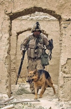 100 Images From Afghanistan - Day 82. The use of K9 teams has proved essential in the detection of booby traps, improvised explosive devices (IEDs) and other explosives that would otherwise be undetectable to modern technologies, greatly increasing soldier safety.