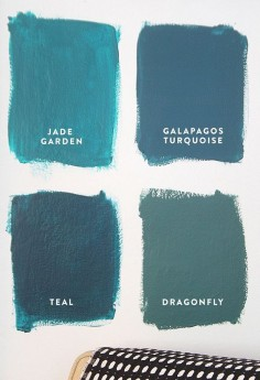 2016 Paint Color Ideas for your Home Teal paint color: Benjamin Moore Jade Garden. Benjamin Moore Galapagos Turquoise. Benjamin Moore Teal. Benjamin Moore Dragonfly.
