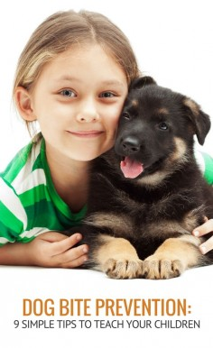 9 Simple Tips for Teaching Dog Bite Prevention to Children