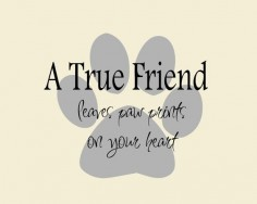 A True  Dog Quote on Paw Print Vinyl Wall Decal, Dog Bumper Sticker, Dog Wall Decal | Dog Lovers Galore