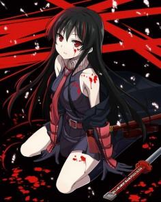 akame Ga Kill anime | Akame.(!).