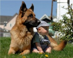 always protecting #GSD