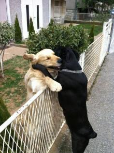 me a hug!
