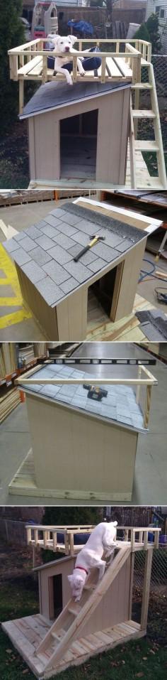 Awesome DIY Dog Houses