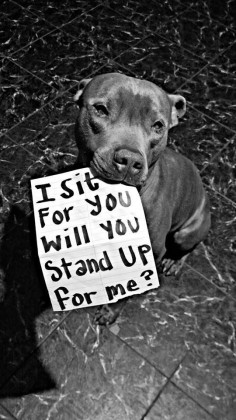 Be the voice,protector of the voiceless and helpless!