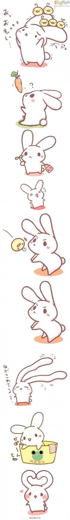 Bunny ~~~~~~ Kawaii ♥