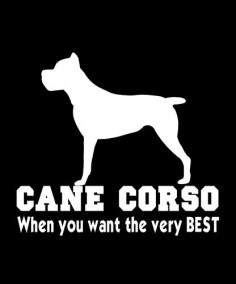 CANE CORSO 4822CC