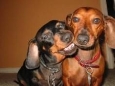 Coco and Rhett