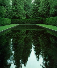 Come to the Dark Side: Dark Bottom Pools ---> like swimming in a forest