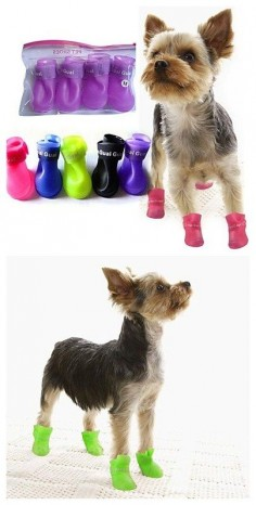 Cute Rain Boots to protect your pet from the rain! Get it in great deal now with our #miniinthebox  mega sales! Click to see more greatest deals coming!