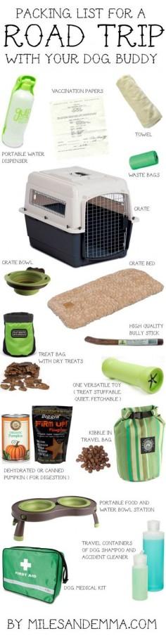 DIY Road Trip Ideas For Your Pet