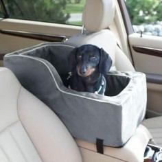 dog car seat! For road trips