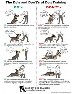 Dog Training illustration by , via Flickr