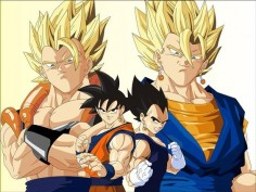 Dragon Ball Z - Goku, Vegeta, Gogeta, Veku