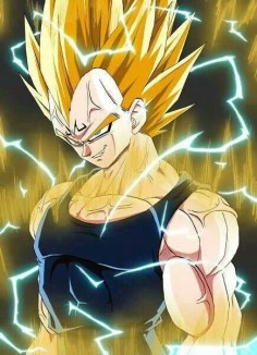 Dragon Ball Z , Majin Vegeta, DBZ desktop wallpapers, Download DBZ hd wallpapers and desktop backgrounds pictures images.