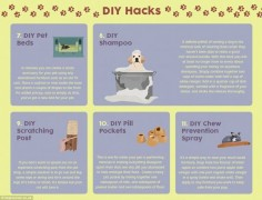 Elsewhere, the infographic contains DIY tips including how to make dog shampoo and 'chew prevention spray' using different vinegars to make a spray that tastes of bitter apple (described above)