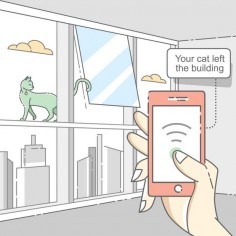 Explaining proximity tracking technology. The cat may be of help. — Medium