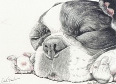 French Bulldog Dog Art Print from Drawing-Carla Smale-BobbysBears #Realism