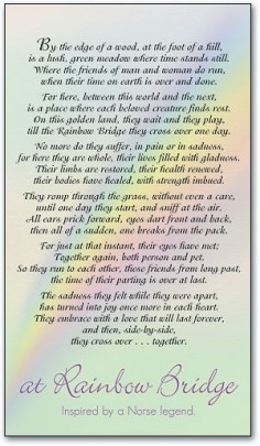 Full Sizes Rainbow Bridges Poems | At Rainbow Bridge Personalized Memorial Card by SmartPractice