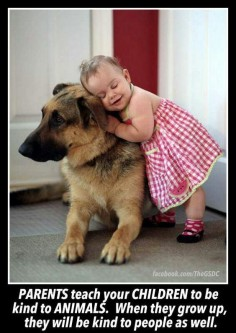 German Shepherds are loyal probably the best dogs but you just need to train them-they will give their life for you-so go and hug your dog-and wish it is a German shepard haha