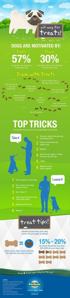 "Great dog training tips from PetSafe -- training with treats, praise; teaching ""Take It"" and ""Leave It"""
