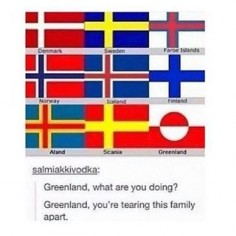 Greenland is part of the Nordics because of, well, Vikings. B-) I love that quote. ;)