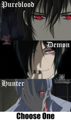 heheh i can´t choose one,well i did not see black  of vampire knights i was stuckon zero a